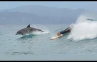 イルカとサーフィン バイロン・ベイ オーストラリア