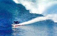 復活 シングルフィン サーフ