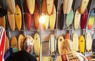 Birds Surf Shed Sessions